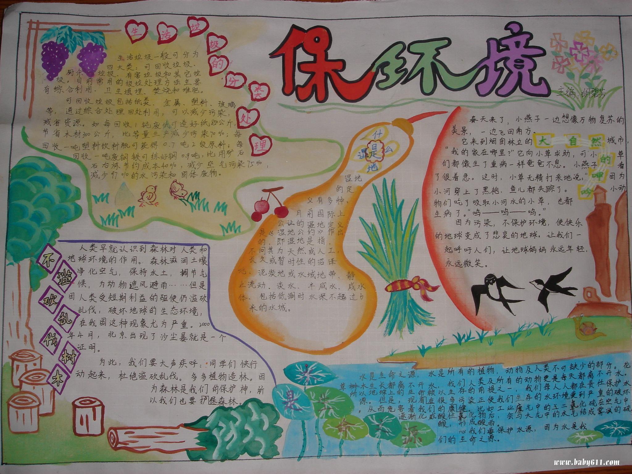 六五世界环境日手抄报 保护环境