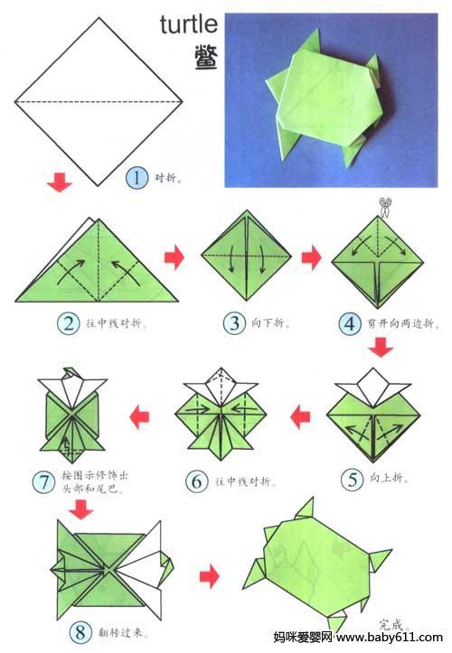 幼儿简单眼睛结构图