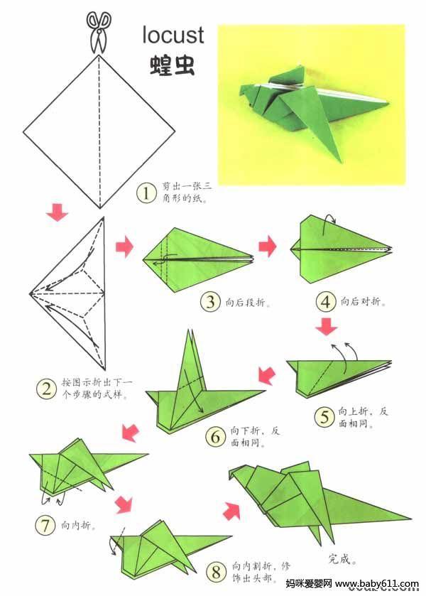幼儿园大班手工折纸活动:教你折可爱的蝗虫