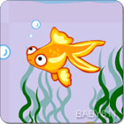 小鱼Little Goldfish