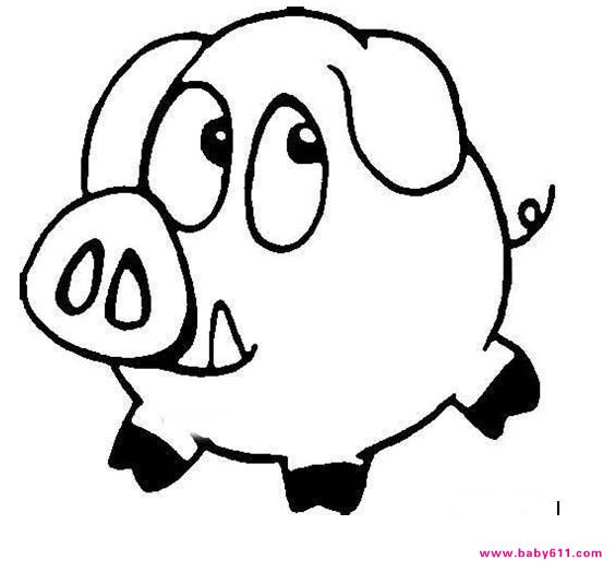幼儿园涂色卡图片:猪