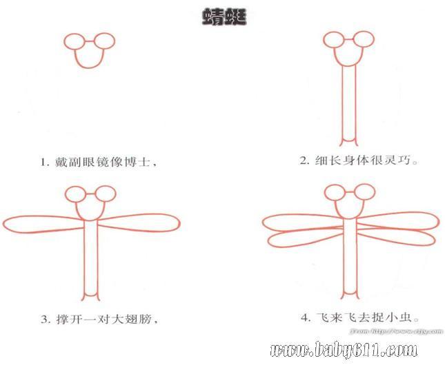 幼儿园简笔画教程:蜻蜓