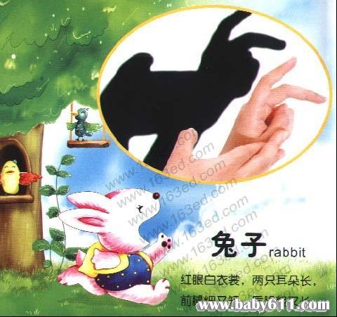 幼儿园手影游戏:兔子