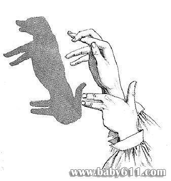 幼儿园手影游戏:狗狗3
