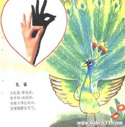儿童手影:孔雀