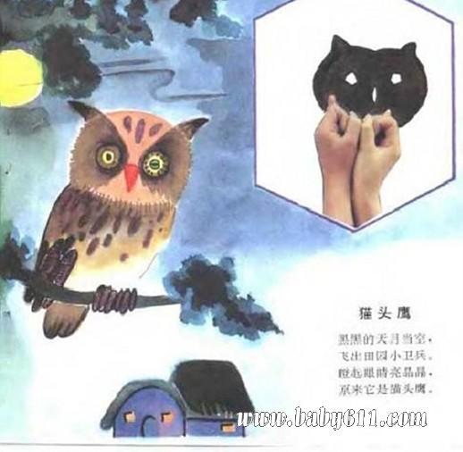 幼儿园手影游戏:猫头鹰1