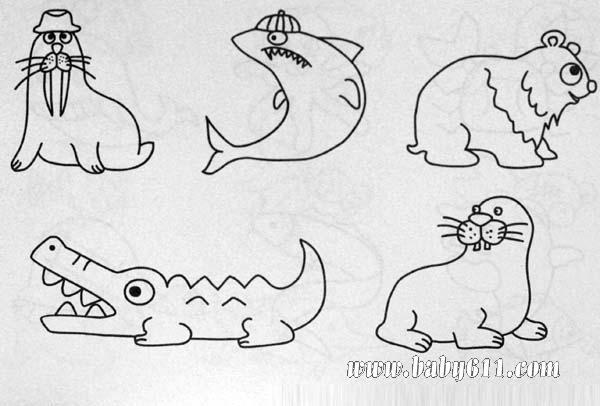 简笔画 海狮 海豹 鳄鱼