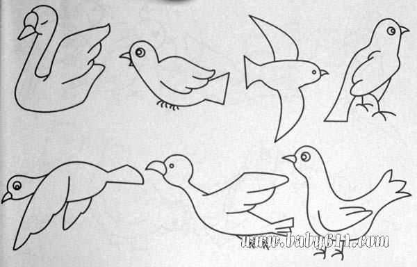 简笔画动物篇:鸭子、鸟、鹦鹉、猫头鹰   简笔画动物篇:鸟高清图片