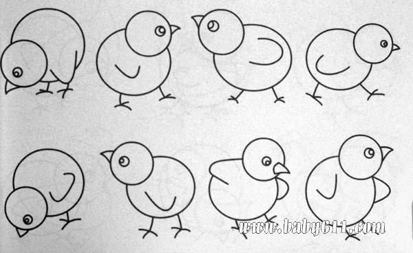 简笔画动物篇 小鸡
