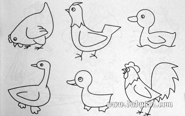 简笔画动物篇:公鸡,鸭子
