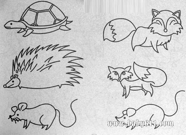 动物简笔画:乌龟,刺猬,狐狸,老鼠