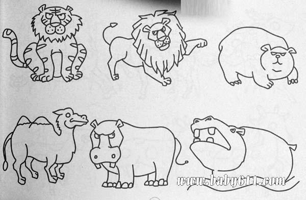 动物简笔画:狮子,猪,骆驼,河马
