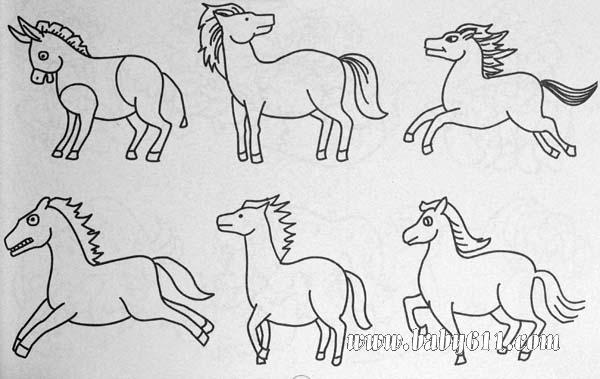 动物简笔画 马