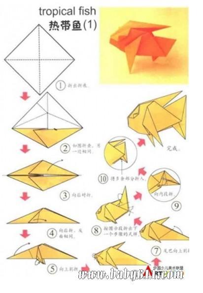 幼儿园手工技能教案 儿童手工折纸  幼儿手工折纸:热带鱼