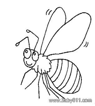 简笔画:蜜蜂 - 简笔画