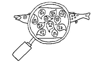 儿童简笔画松鼠画; 运动的小朋友简笔画;