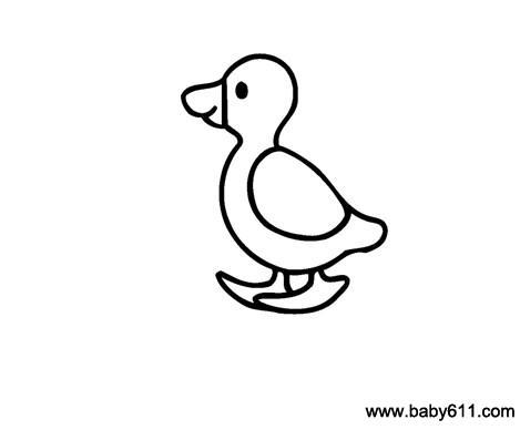 儿童简笔画:小鸭子