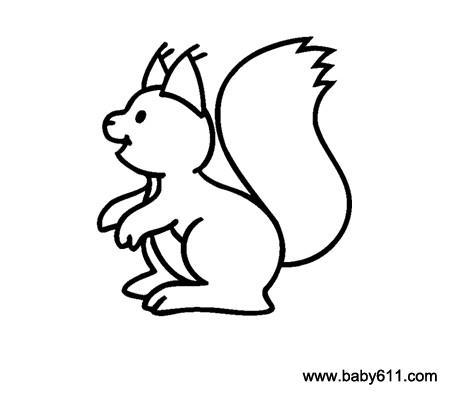 儿童简笔画:小松鼠图片