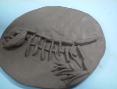 幼儿园大班手工活动教案:《恐龙化石》泥工
