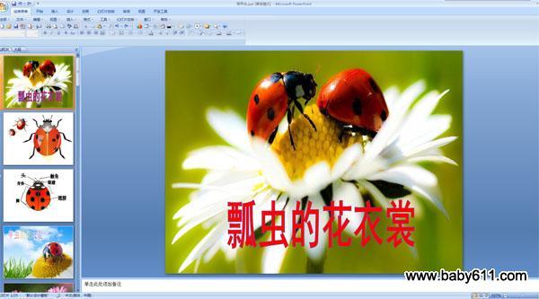 幼儿园课件多媒体PPT瓢虫《画教学》课件的花多媒体备课甲虫图片