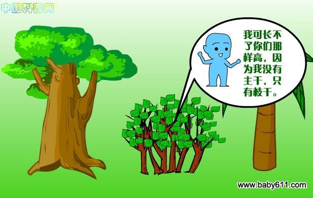 卡通识字树矢量图