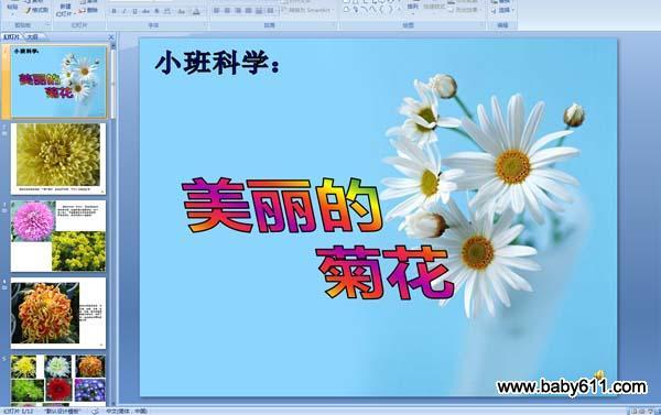 幼儿园小班科学活动:美丽的菊花