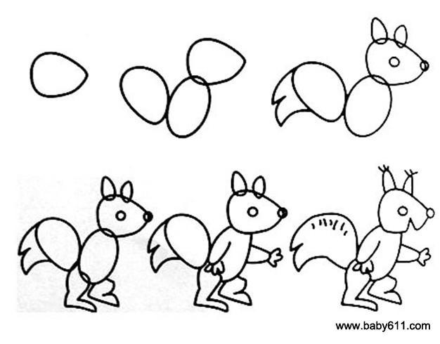 幼儿简笔画:小松鼠