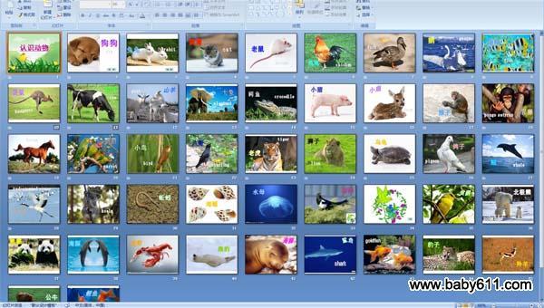 幼儿园科学活动:认识动物
