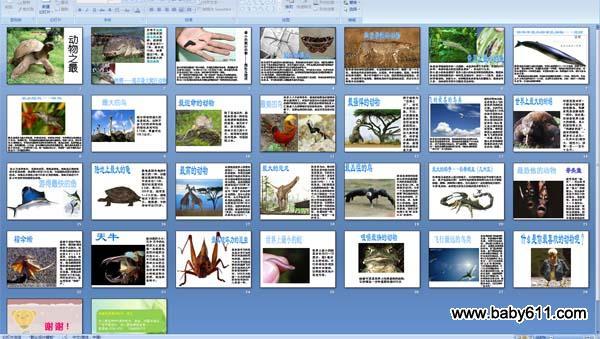 幼儿园科学:动物之最 ppt课件