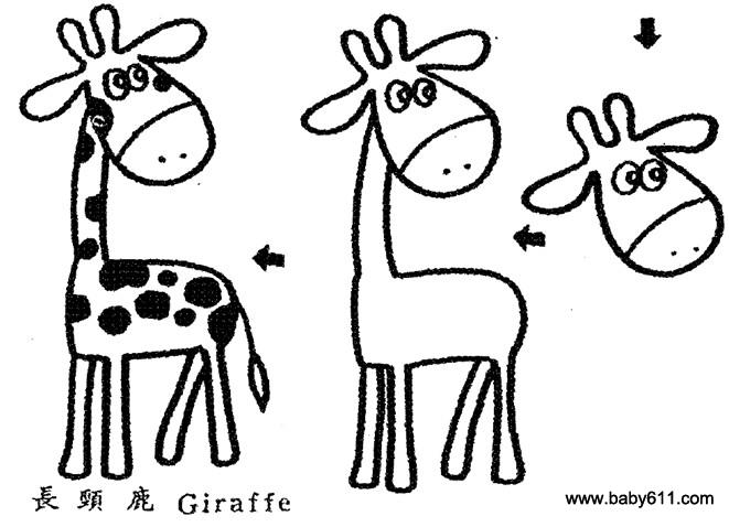 幼儿园幼儿简笔画:长颈鹿