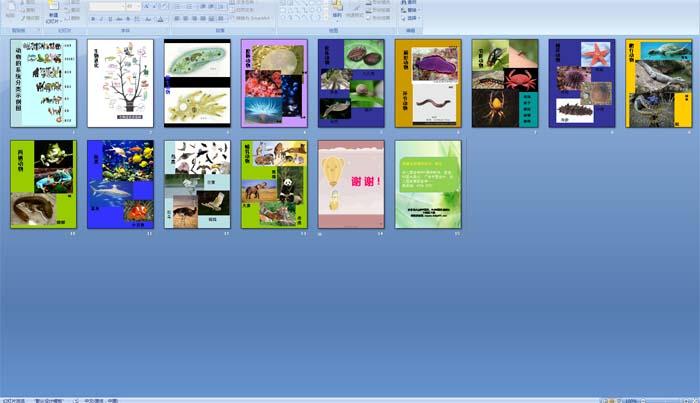 动物的系统分类示例图ppt课件