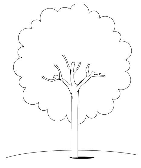 幼儿涂色卡:树
