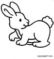 幼儿涂色简笔画:小兔