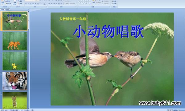 小动物唱歌教案