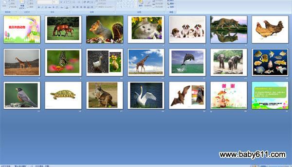 幼儿园中班科学 ppt 课件 我喜欢的动物