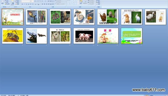 幼儿园中班科学:动物的嘴巴ppt课件