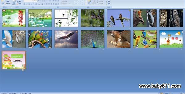 幼儿园小班社PPT鸟儿:美丽的课件有课件教室多长简介图片