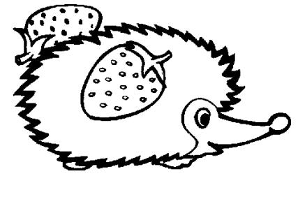 儿童简笔画:刺猬