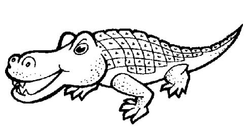 儿童简笔画 鳄鱼
