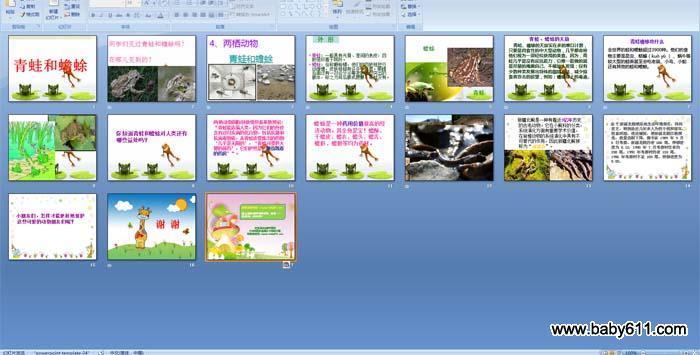 小学三年级科学 青蛙和蟾蜍 PPT课件