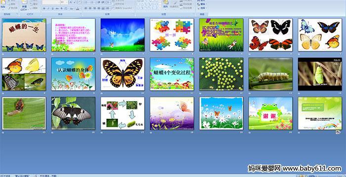 幼儿园中班社会教案 蝴蝶的一生 PPT课件