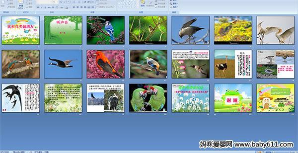 幼儿园分数性质PPT课件:我和朋友做鸟类科学基本中班说课稿苏教版图片