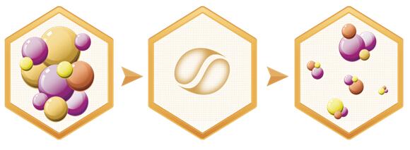 蛋白酶水解技术,将完整的大分子蛋白切碎形成适度酶水解蛋白