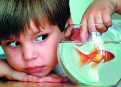 孩子交往少易性格孤僻