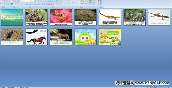 活动目标   1、了解生活中常见动物尾巴的形状及动物尾巴的作用。   2、培养幼儿的观察力、表达能力及动手操作能力。   3、培养幼儿对动物的喜爱,我们要保护动物。   此ppt多媒体课件总共12页,请往下拉点击下方按钮进行下载。