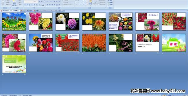 幼儿园大班科学活动《秋天的花》ppt课件