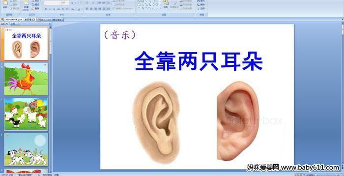 幼儿园小班音乐ppt课件——全靠两只耳朵