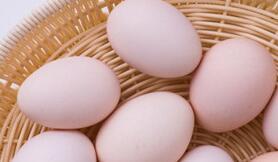 孕妇吃什么最营养 多吃5种食物有益健康