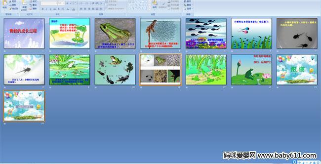 幼儿园中班科学活动《青蛙的成长过程》课件
