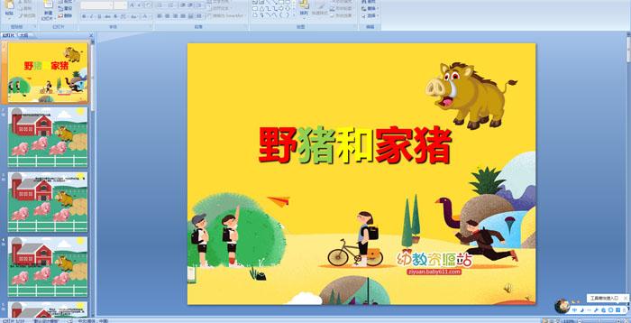 幼儿园故事课件:野猪和家猪